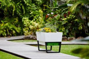 Las mejores mesas de cultivo para huerto urbano de 2020